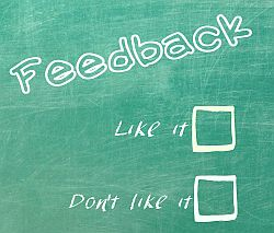 voice your opinion in online surveys