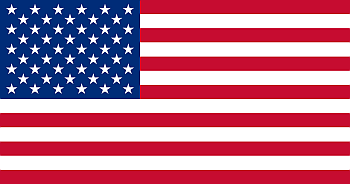 us flag button