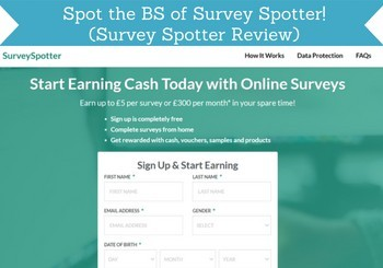 survey spotter review