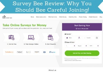 survey bee review header