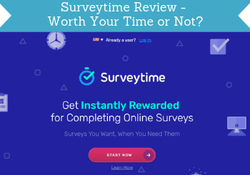 surveytime review header