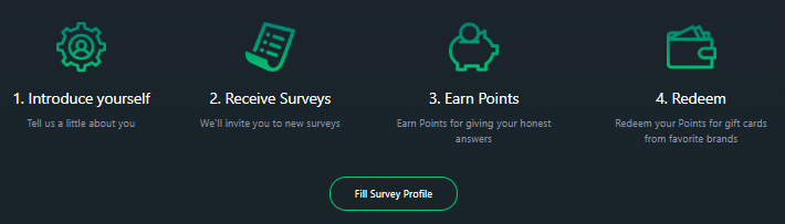 ezpoints survey profile
