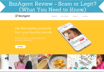 bzzagent review header