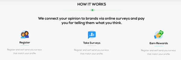 power of opinions paid surveys