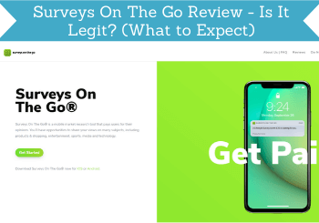 surveys on the go review header