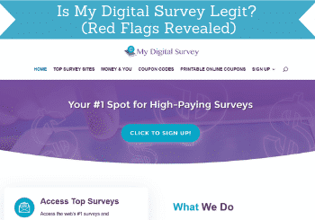 my digital survey review header