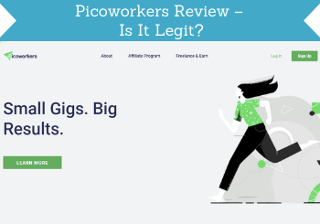picoworkers review header image