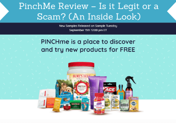 Pinchme Review Header