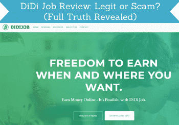 Didi Job Review Header