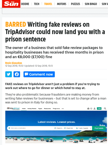 fake review article