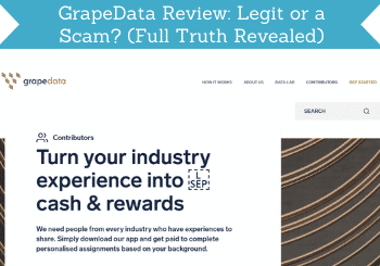 grapedata review header