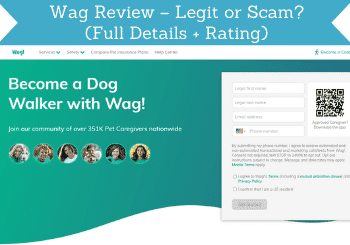 wag review header